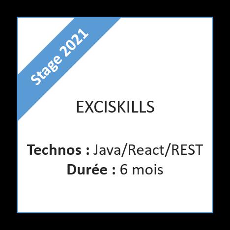 Stage ExciSkills - 2021